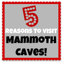 5 Reasons to Visit Mammoth Cave with Kids!