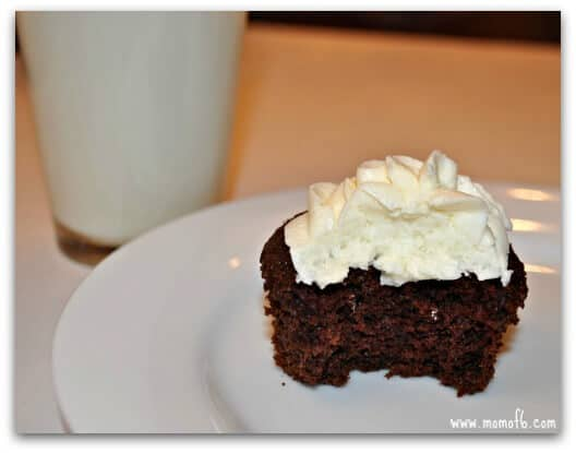 The Best EVER One Bowl Chocolate Cupcakes!