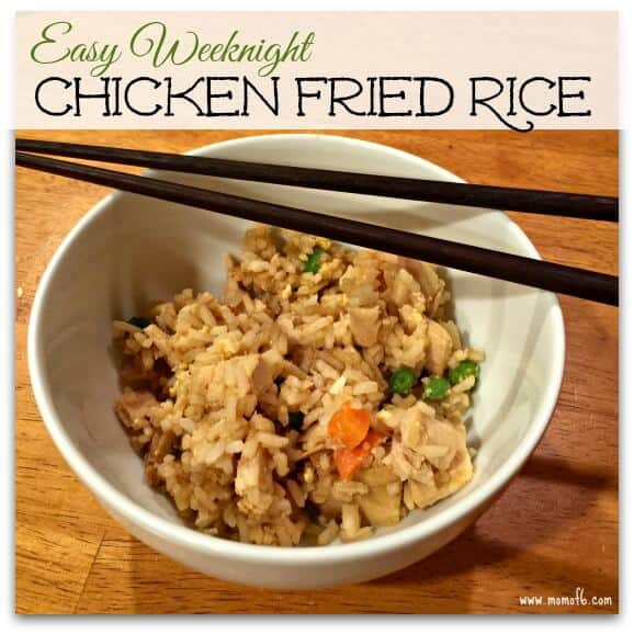 Chicken Fried Rice Lg Badge