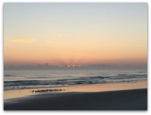 Sunrise nsb