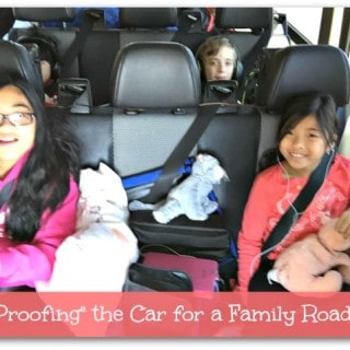 """Kid Proofing"" the Car for a Family Road Trip"