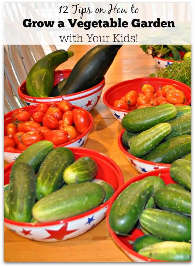12 Vegetables To Plant In August Zone 9: 12 Tips On How To Grow A Vegetable Garden With Your Kids