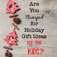 Still Stumped for Holiday Gift Ideas?