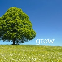 My Word of the Year for 2016: Grow