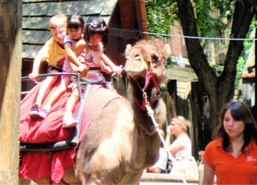 zoos with kids