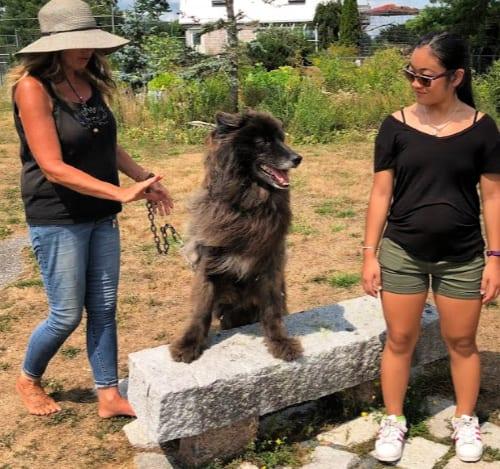 visiting wildlife parks