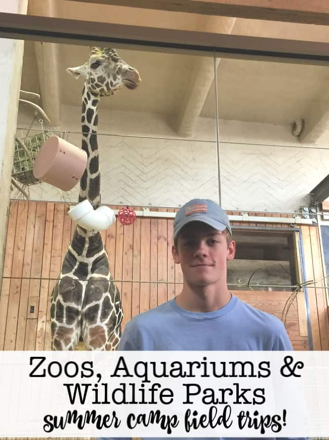 We feel that visiting zoos, aquariums, and wildlife parks is a fun and educational way to spend a day! Over the years I've picked up a few tips to make the most of our animal-adventures!