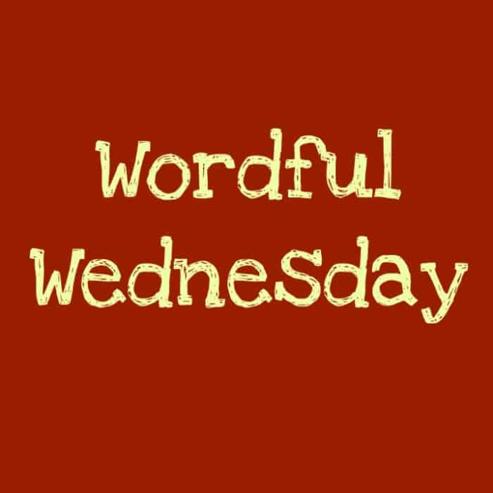 Wordful Wednesday: Sometimes You Just Gotta Scrub!