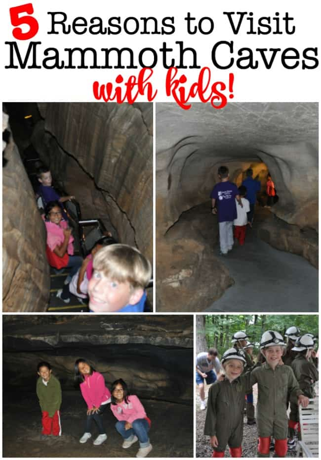 There are so many great reasons to visit Mammoth Cave with Kids! Mammoth Cave National Park is the world's longest cave system- and makes for a fantastic family road trip destination! #MammothCaveWithKids #FamilyRoadTrip #MammothCaveNationalPark #FamilyVacation