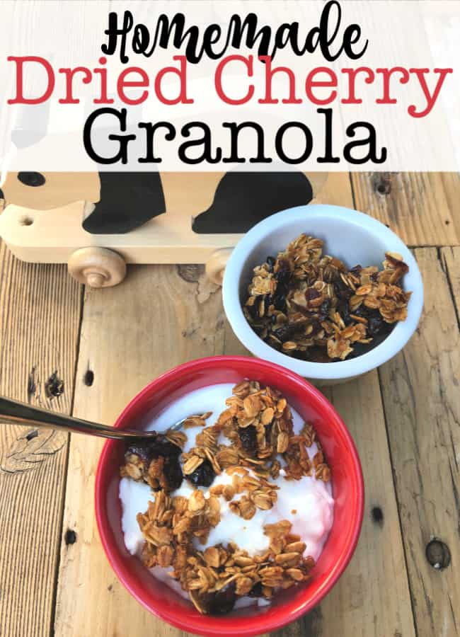 This homemade dried cranberry granola is tasty, healthy and you can make it the day before so it's ready to go in the morning!