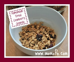 Homemade Dried Cherry Granola Badge