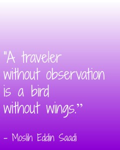 a traveler without observation