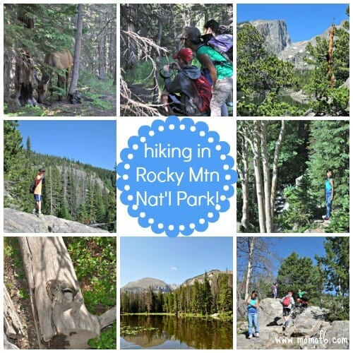 Rocky Mountain National Park is an amazing place to visit with kids! The hiking is awesome, and what kid wouldn't love to take a trail ride and learn all about the park from a wrangler? With plenty of chances to spot wildlife and even earn a Junior Ranger badge- this national park should be on every family's bucket list!