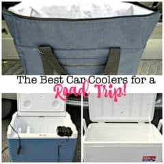 The Best Car Coolers for a Family Road Trip!