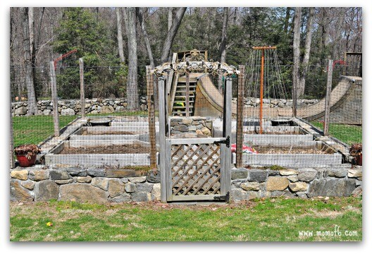 Planning the Backyard Vegetable Garden