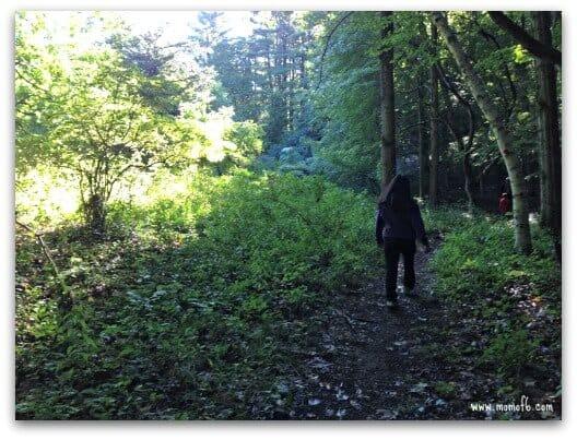 Sunday Morning Hiking Club Photos2