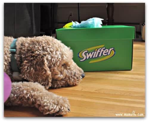 Swiffer2