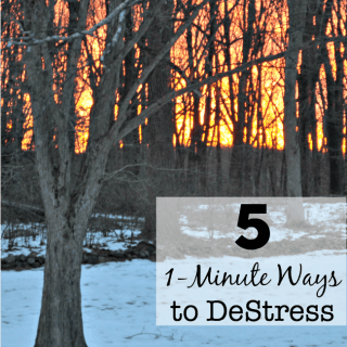 I am making a conscious effort this year to notices how much stress I am adding to my day. In my quest to improve… Here are 5 1-Minute Ways to DeStress!