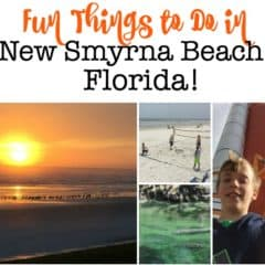 Fun Things to Do in New Smyrna Beach- A Perfect Family Destination!