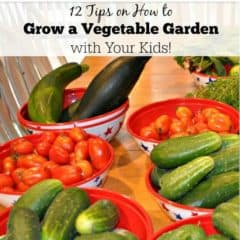 12 Tips on How to Grow a Vegetable Garden with Your Kids!