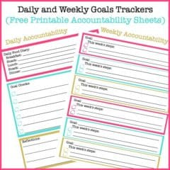 Daily Goals and Weekly Goals Tracking Sheets (Free Printable Accountability Sheets)