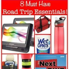 Traveling with Kids? Here are 8 Must-Have Road Trip Essentials!