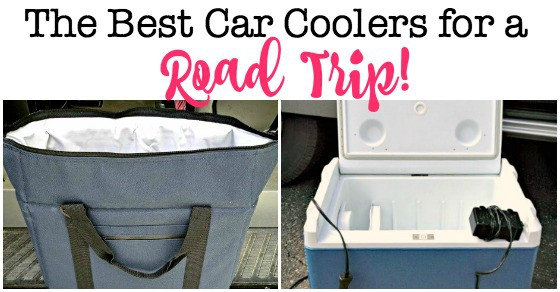 the best car coolers for a family road trip momof6. Black Bedroom Furniture Sets. Home Design Ideas