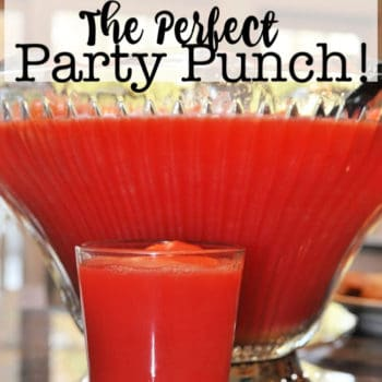 The Perfect Party Punch Recipe!